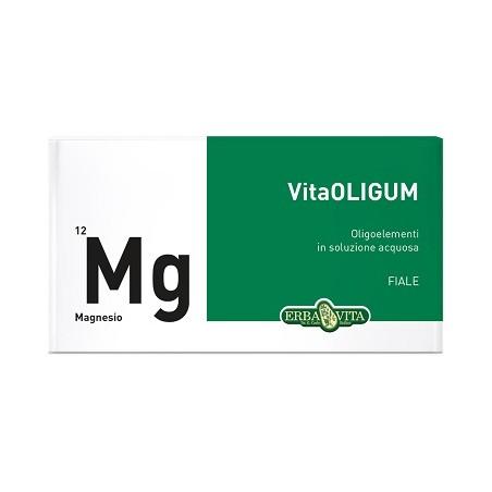 VITAOLIGUM MAGNESIO 20F