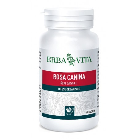 ROSA CANINA 60CPS 400MG