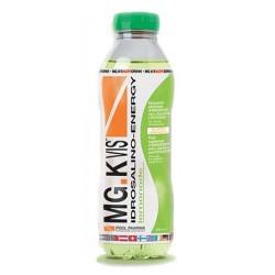MGK VIS DRINK ENERGY LEM 500ML