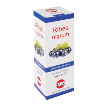 RIBES NIGRUM MG 100ML GTT