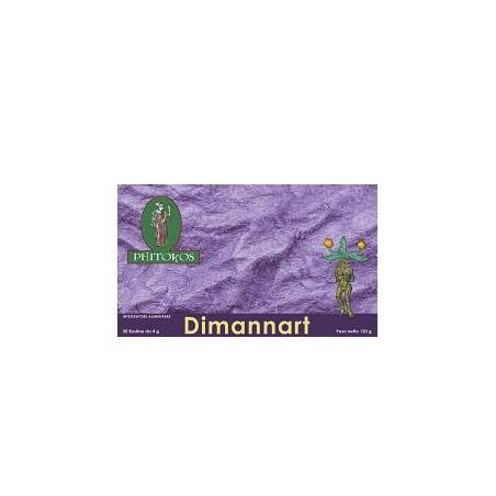 DIMANNART 30BUST 4G