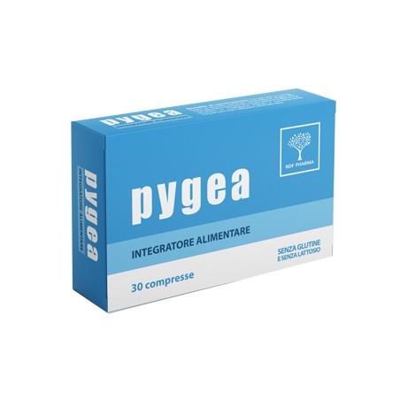 PYGEA 30CPR