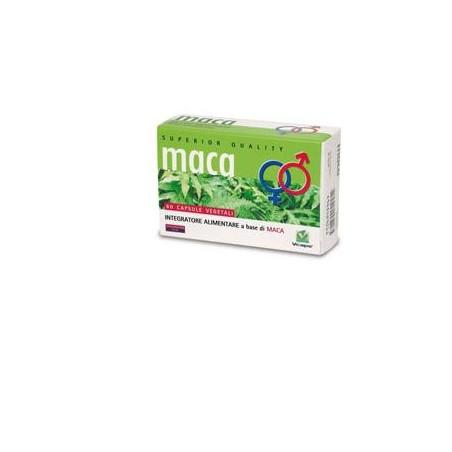 MACA 60CPS