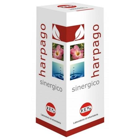 HARPAGO SINERGICO GTT 100ML