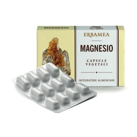MAGNESIO 24CPS 1200MG